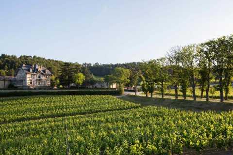 Languedoc: Prestigious Tour of Domaine de Baronarques
