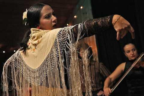 Malaga: Flamenco, Tapas, and Wine Tour