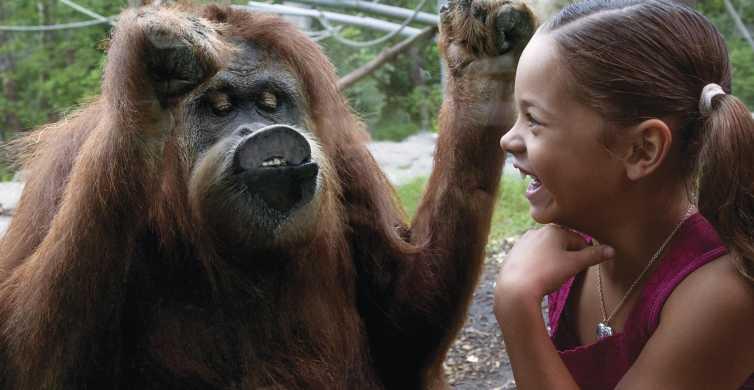 Skip the Ticket Line: San Diego Zoo 1-Day Ticket