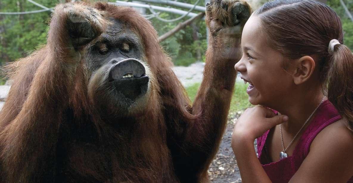 Zoo w San Diego: 1-dniowy bilet wstępu bez kolejki