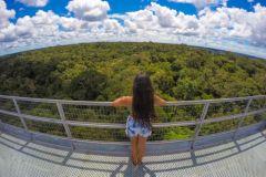 Manaus: Excursão Museu Amazônia, INPA e Torre de Observação