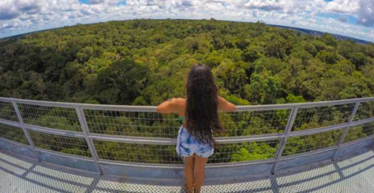 Manaus: MUSA and INPA Museums with Observation Tower Tour