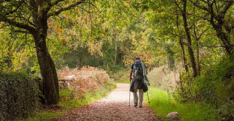 Sarria to Santiago: 100 km 7-Day Hike Self-Guided Tour