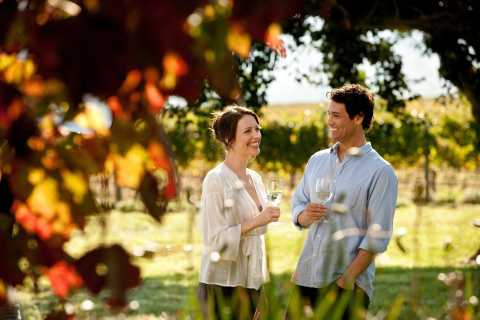 Mornington Peninsula: Scenic Wine, Cheese And Chocolate Tour