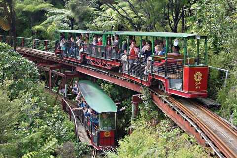 Coromandel: Driving Creek Railway und Kauri-Wald