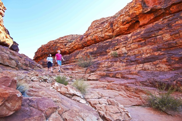 Kings Canyon: Full-Day Tour from Ayers Rock Resort