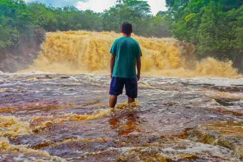 From Manaus: Presidente Figueiredo Waterfalls Daytrip