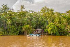 Manaus: Excursão Selva Amazônica c/ Anaconda Lodge
