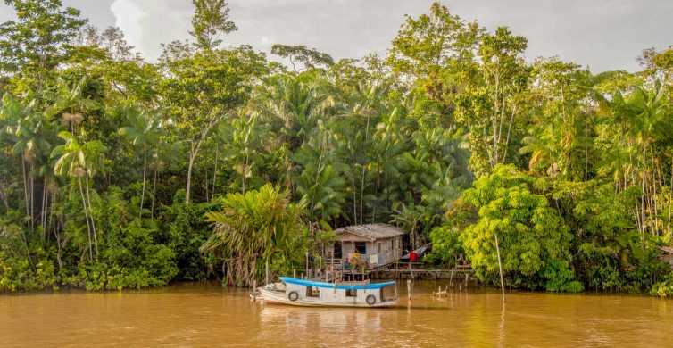 Manaus: 2, 3 or 4-Day Amazon Jungle Tour in Anaconda Lodge