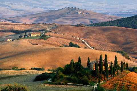 From Florence: Val D'Orcia Full-Day Wine Tasting Tour