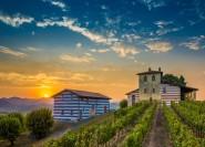 Aus Mailand: Ganztägiges Essen & Wein-Erlebnis in Franciacorta