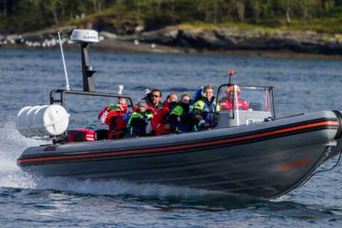 Tromso: RIB-Boat Excursion to Hella