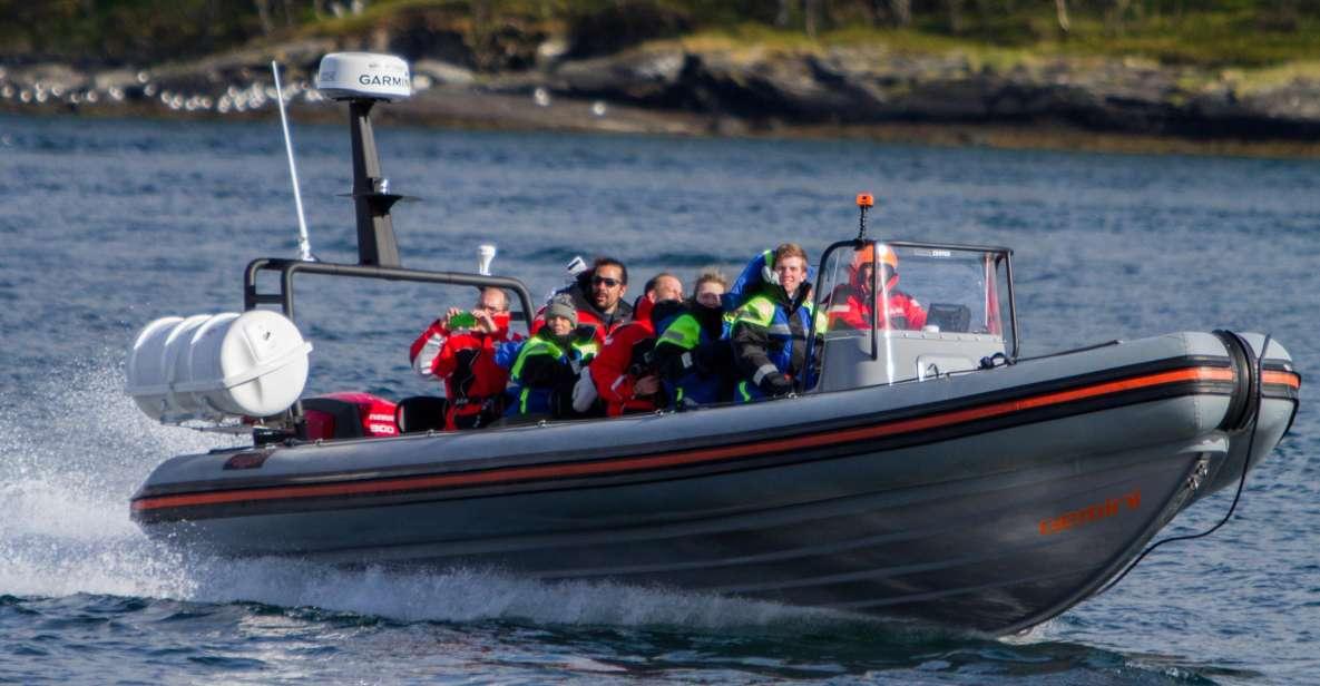Tromsø: RIB-Bootstour nach Hella