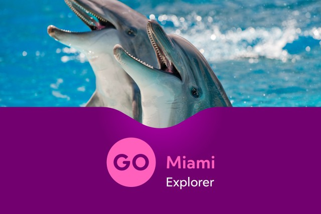 Go Miami Explorer Pass: Over 28 Tours And Attractions