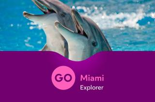 Go Miami Explorer Pass: über 28 Touren & Attraktionen