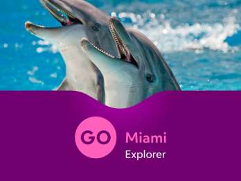 Go Miami Explorer Pass: über 28 Touren & Attraktionen