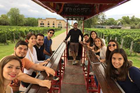 Mendoza: Winebike Tasting Tour with Optional Lunch