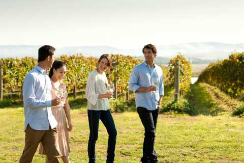 Yarra Valley Wine, Chocolate & Local Produce Tour