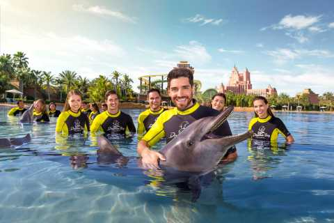 Atlantis The Palm: Dolphin Swim And Explore-oplevelse