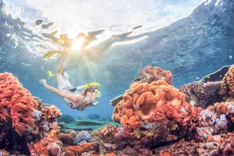 Bali: Snorkeltrip naar de Padangbai Blue Lagoon