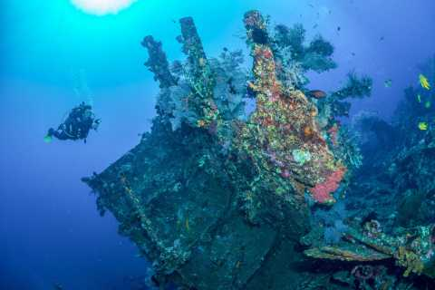 Bali: Tulamben Bay en de USAT Liberty scheepswrakduik