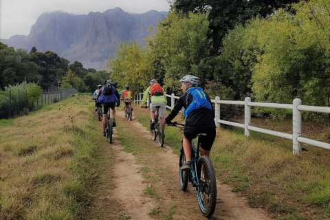 From Stellenbosch: E-Bike Tour with Wine Tasting and Lunch