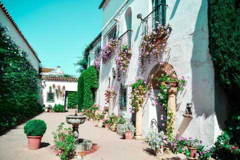 Cordoue: visite du palais de Viana et des patios
