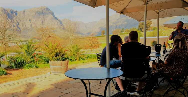 From Stellenbosch: Hop-On Hop-Off Wine Tour Southern Route