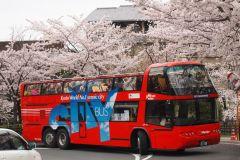 Quioto: Bilhete de Ônibus Hop-on Hop-off de 1 ou 2 Dias