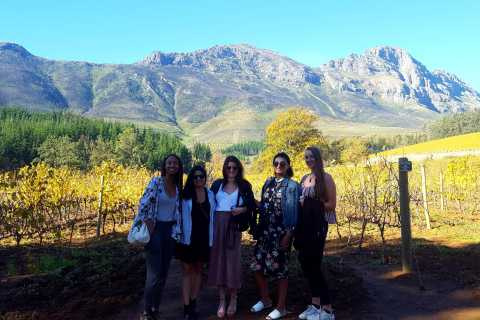 Stellenbosch: Eastern Route Hop-On Hop-Off Wine Tour