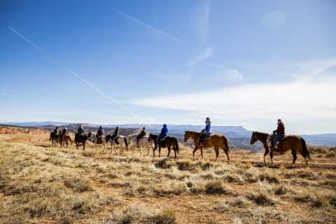 Bryce Canyon: Horseback Ride in the Dixie National Forest