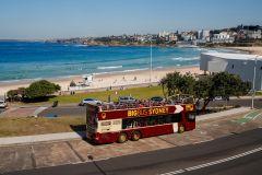 Sydney: Ônibus Hop-On Hop-Off 2 Dias c/ Cruzeiro e Atrações
