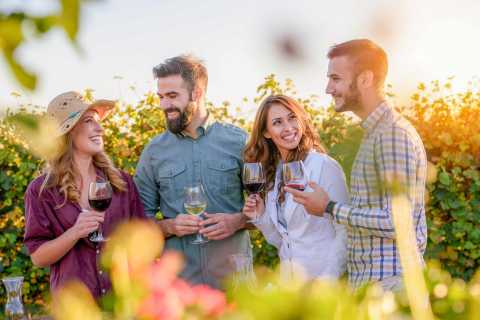 From Los Gatos: Saratoga Trail Wineries Tour