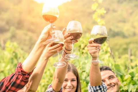 From Los Gatos: Summit Wineries Tour