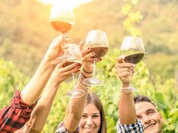 Von Los Gatos: Summit Wineries Tour
