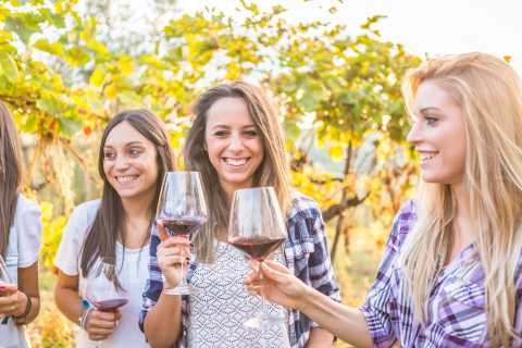 From Los Gatos: South Bay Wineries Tour