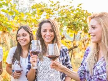 Von Los Gatos: South Bay Wineries Tour
