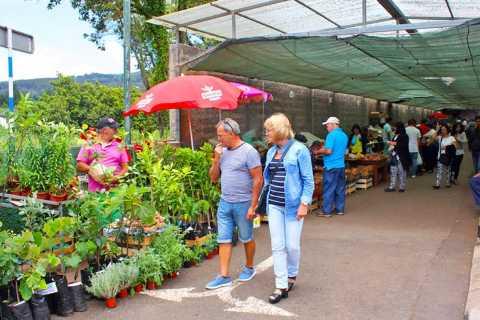 Da Funchal: mercato della domenica e tour di mezza giornata a Santo da Serra