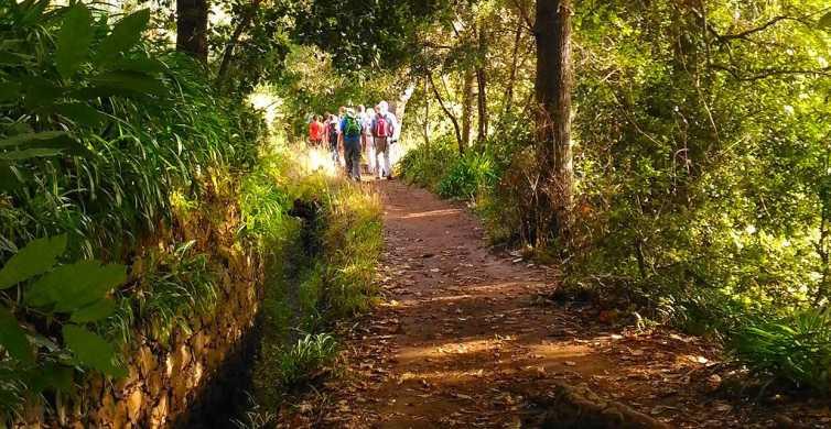Madeira: Paradise Valley Levada Walk