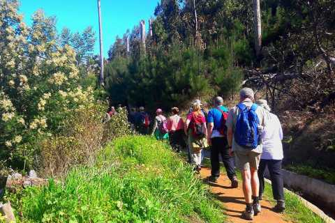 Valle di Serra de Água Levada Walk