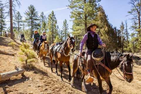 Bryce Canyon: 3-Hour Horseback Ride in Red Canyon