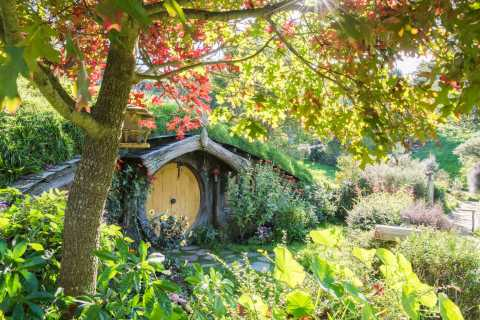 From Auckland: Small-Group Hobbiton and Waitomo Day Tour