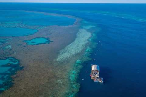 Daydream Island: Outer Great Barrier Reef Full-Day Tour