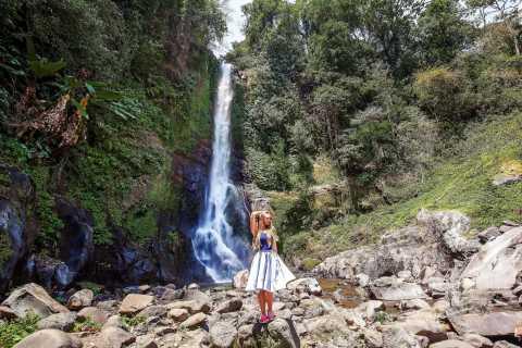 Bali: Gitgit e Alingaling Waterfalls Small Group Tour