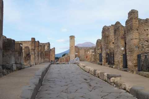 Sorrento: Skip-the-Line Pompeii Express Tour by Train