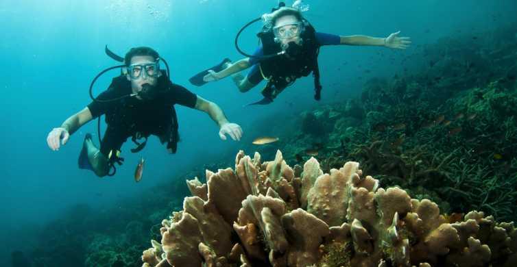 Phi Phi: Diving for Certified Divers
