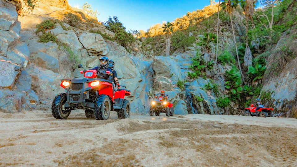 Single ATV Desert Adventure with Lunch and Eco-Farm