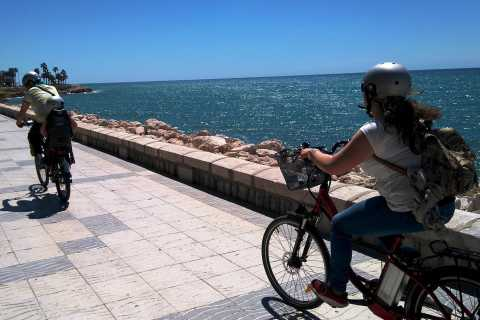 Málaga: Full Day Guided Tour with Free Time by Electric Bike