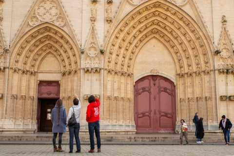 Lyon: 3-Hour Highlights of Lyon Tour
