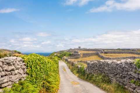 Da Doolin: crociera a Inis Oirr e alle Scogliere di Moher